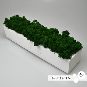Бетонное кашпо со стабилизированным мхом, green
