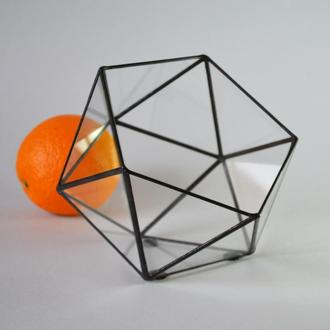 Флорариум № 6 - Икосаэдр M