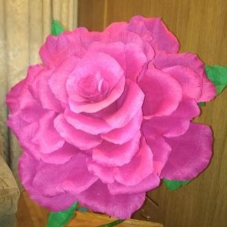 Ростовая розовая роза