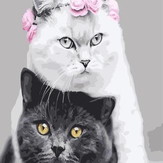 Картина по номерам 40х50 Белая кошка, чёрный кот (GX26128)