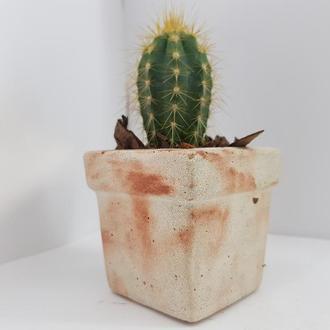 Бетонное кашпо, бетонное кашпо для цветов, бетонное кашпо для кактусов  - белое с оранжевым