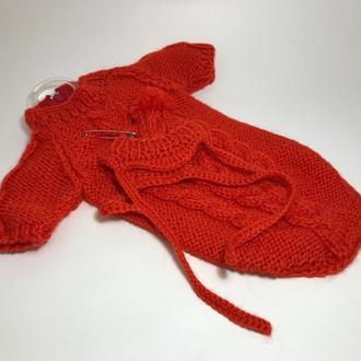 Костюм и шапка для собаки или кота вязанный