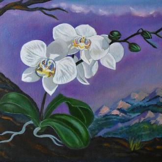 Таинственная Белая Орхидея. Картина маслом. Цветы. Пейзаж. Размер 40X30 см