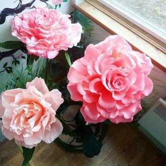 Розарий из ростовых роз