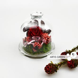 Мини-колба со стабилизированными растениями и розой «Rosy spring»