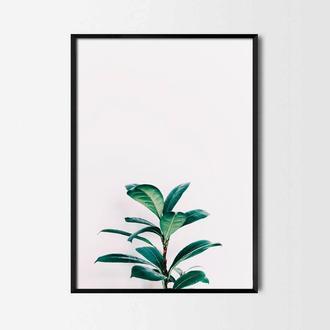 Фотопостер Растение