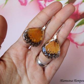 Серьги из крыльев настоящих бабочек в ювелирной смоле.