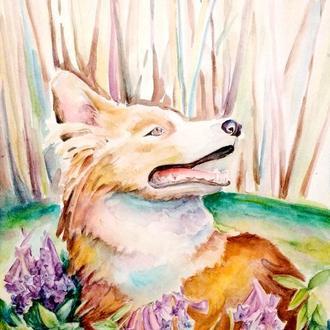 Портрет собаки Собака по фото Картина на заказ Картина по фото Собака акварель Картины с животными