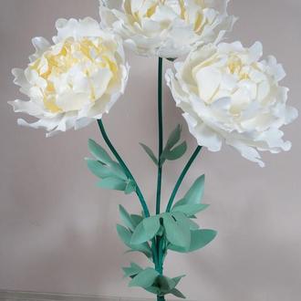 Белый пион с изолона (ростовые цветы)