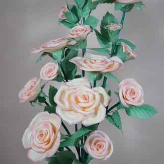 Вьющаяся розовая роза с изолона (ростовые цветы)
