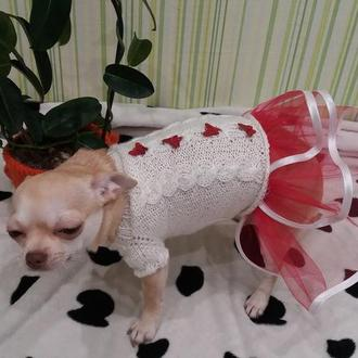платье для модной девчули