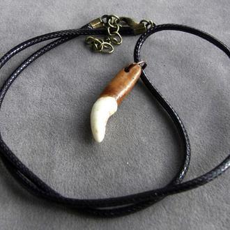 Амулет Волчий зуб натуральный от 25мм черный кожаный шнур от 40мм - 01