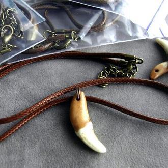 Амулет Волчий зуб натуральный от 25мм коричневый кожаный шнур от 40мм - 05