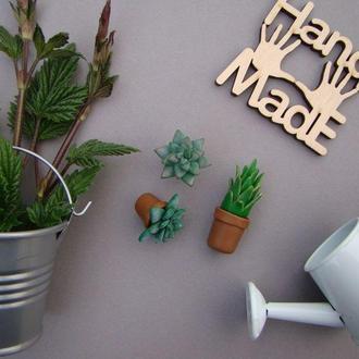 Комплект миниатюр Комнатные цветы