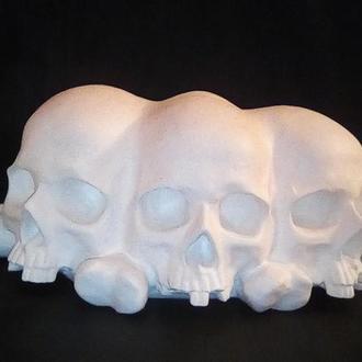 череп триликий на костях