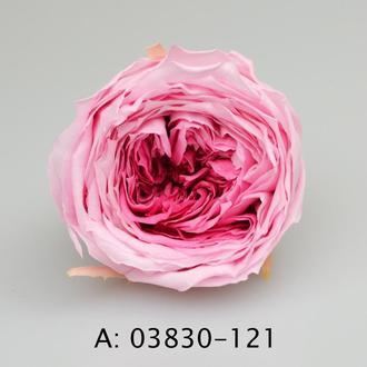 """Стабилизированная роза """"Темари"""" для флористики и декора"""