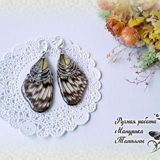 """Серьги из крыльев бабочек """"Нежность"""""""