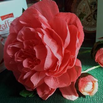 Композиция  из бумаги пион нежно-розовый