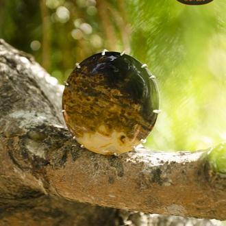 Серебряная брошка с окаменелым корнем кокоса (окаменелость)