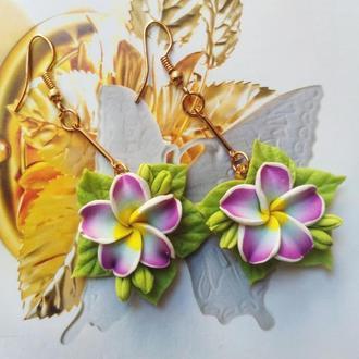 Сережки Франжіпані Сережки квіти
