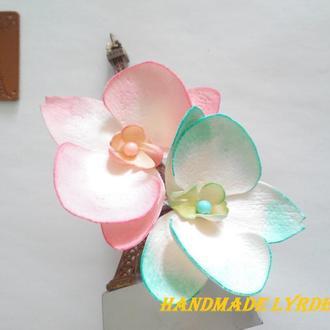 Цветы орхидеи Фаленопсис