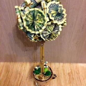 денежное дерево, топиарий