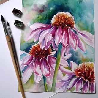 """Картина """" Єхінацея"""" акварель, ботанічний скетч, купити"""