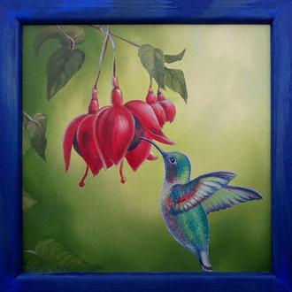 """"""" Колибри 3 """" Миниатюрная живопись размером 20 х 20 см, из серии """" цветы и птицы"""""""