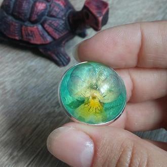 Кольцо с живым цветком Анютки