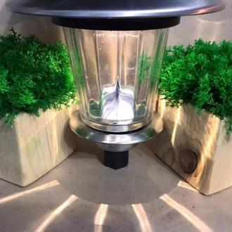 Кашпо, бетонний горщик, Подарунок, Вироби з моху, Стабілізований мох
