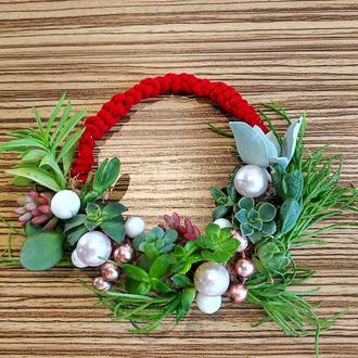 Рождественский венок из живых суккулентных растений