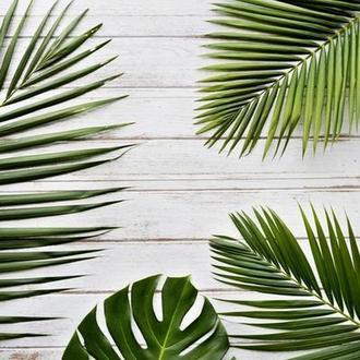 Виниловый фотофон белые текстурные доски и листья 100*70