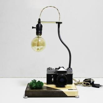 Настольная лампа PRIDE&JOY c винтажным фотоаппаратом и мхом