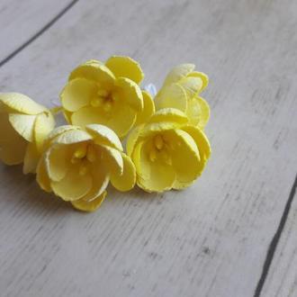 Цветы яблони желтые