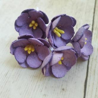 Цветы яблони фиолетовые