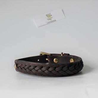 Ошейник для собаки c плетением  коричневый