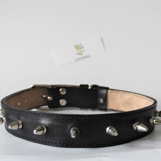 Ошейник для собаки с шипами кожаный