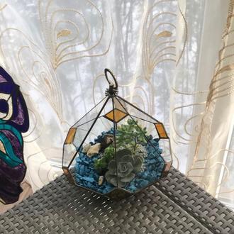 Геометрический подвесной стеклянный флорариум в форме слезы для мини сада