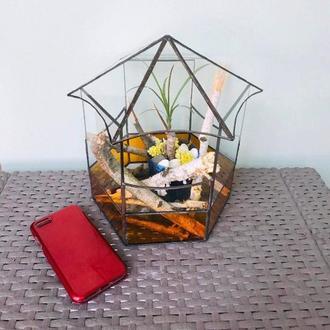 Флорариум, геометрическая стеклянная емкость для суккулентов и растений, контейнер для мини-сада