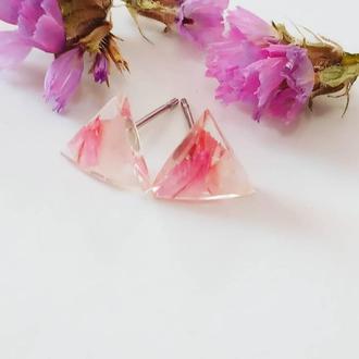 Мініатюрні сережки на гріздках