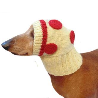 Шапка для собаки пицца