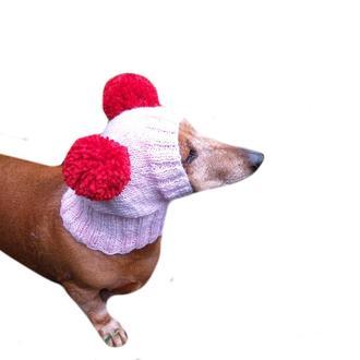 Шапка для собаки с двумя помпонами
