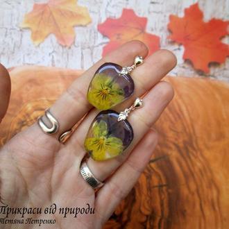 Серьги-пусеты из натуральных цветов виолы (Анютины глазки) в ювелирной смоле.
