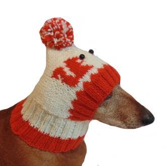 Зимняя шапка для собаки Белочки