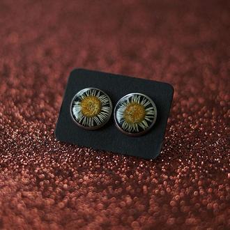 Серьги-гвоздики с Ромашками на чёрном фоне