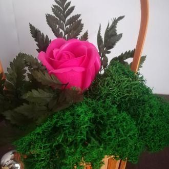 корзинка из мха с розой