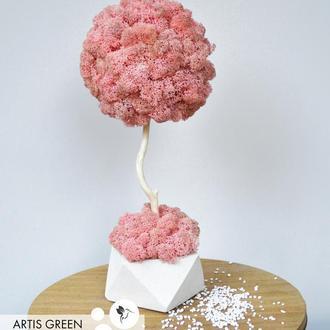 Эко-дерево, топиарий из стабилизированного мха Fresh Coral, 30 cm