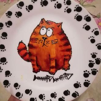 Обжора кот