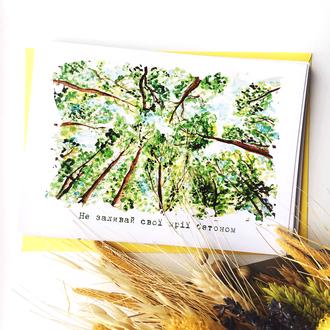 Листівка «Дерева»
