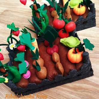 Огород из овощами и ягодами